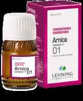 Lehning Arnica Complexe N° 1 Solution Buvable En Gouttes Fl/30ml à ALBERTVILLE