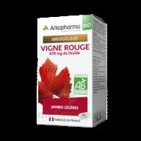 Arkogélules Vigne Rouge Bio Gélules Fl/45 à ALBERTVILLE