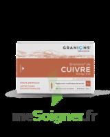 Granions De Cuivre 0,3 Mg/2 Ml S Buv 30amp/2ml à ALBERTVILLE
