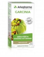Arkogélules Garcinia Gélules Fl/45 à ALBERTVILLE