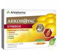 Arkoroyal Dynergie Ginseng Gelée Royale Propolis Solution Buvable 20 Ampoules/10ml à ALBERTVILLE