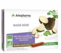 Arkofluide Bio Ultraextract Radis Noir Solution Buvable 20 Ampoules/10ml à ALBERTVILLE