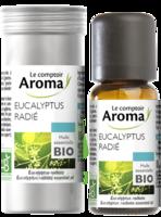 Huile Essentielle Bio Eucalyptus Radié à ALBERTVILLE