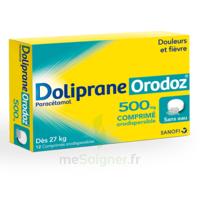 Dolipraneorodoz 500 Mg, Comprimé Orodispersible à ALBERTVILLE