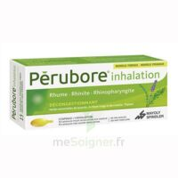 Perubore Caps Inhalation Par Vapeur Inhalation Plq/15 à ALBERTVILLE