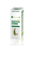 Huile Essentielle Bio Eucalyptus Citronné à ALBERTVILLE