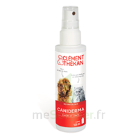 Clément Thékan Caniderma Solution Externe Cicatrisant Spray/125ml à ALBERTVILLE