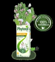 Phytoxil Toux Sans Sucre Sirop Adulte Enfant +2 Ans Fl/120ml à ALBERTVILLE