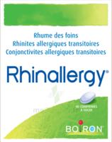 Boiron Rhinallergy Comprimés B/40 à ALBERTVILLE