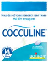 Boiron Cocculine Comprimés Orodispersibles B/40 à ALBERTVILLE